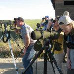 Observando aves en la Laguna de Boada