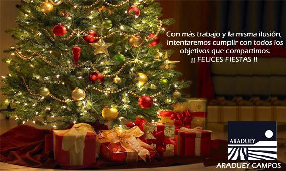 Felicitación-navideña-2013